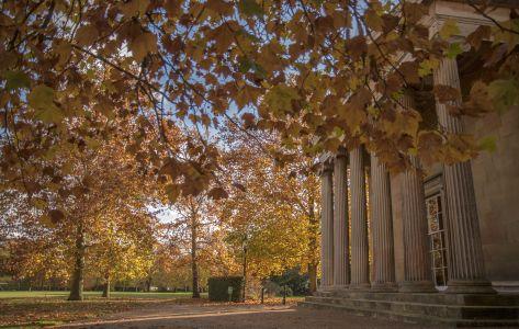 Autumn at Downing, courtesy of HC Hernandez
